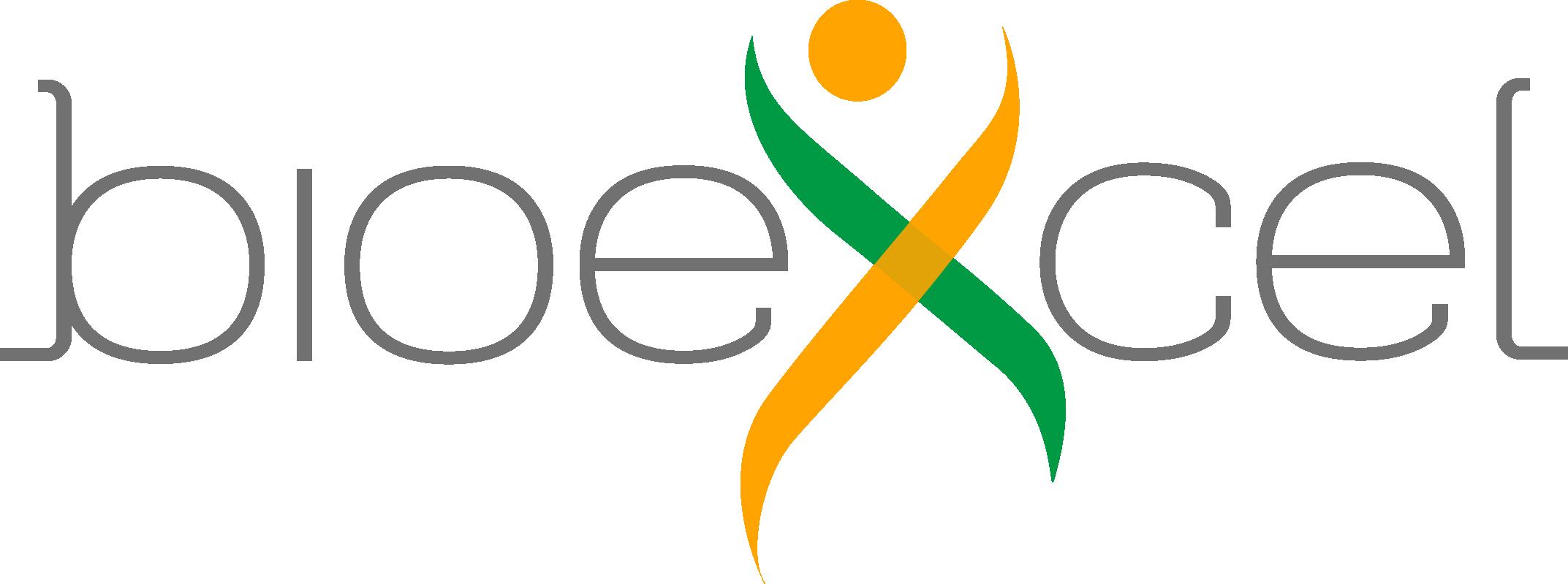 BioExcel logo